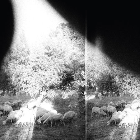 Godspeed_You!_Black_Emperor_Asunder,_Sweet_and_Other_Distress