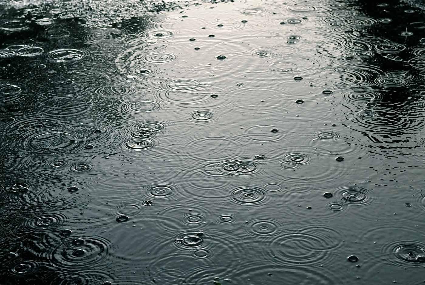 Cinco canciones para días lluviosos
