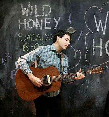 Escucha el primer avance de Wild Honey
