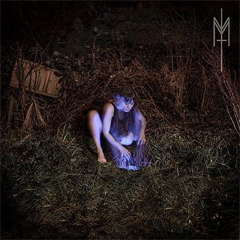 maud-the-moth-2