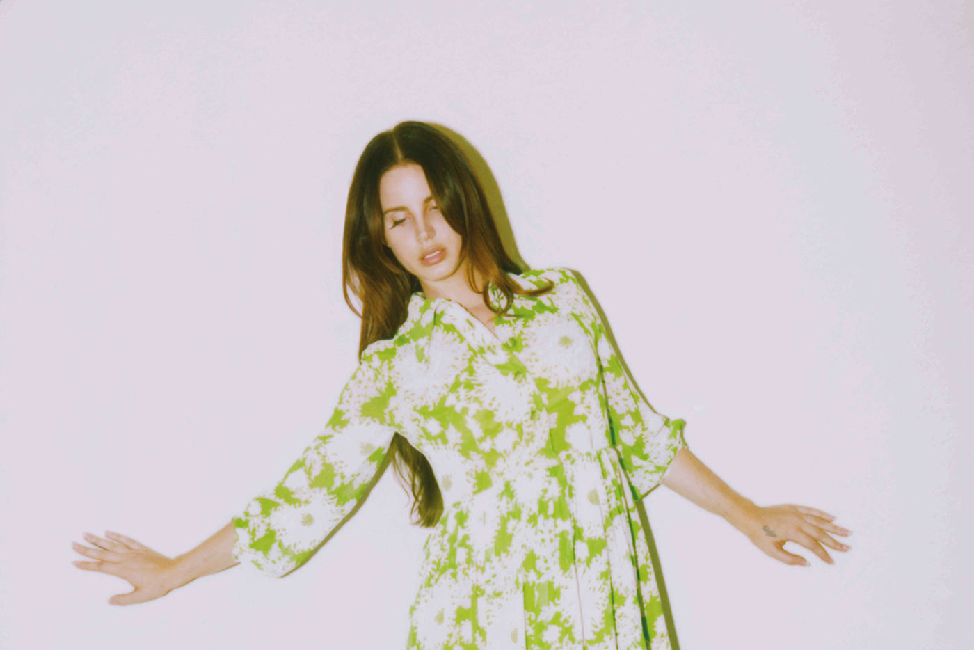 "Lana Del Rey publica ""Violet Bent Backwards Over The Grass"""