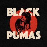 black pumas disco