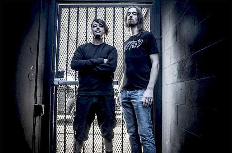 Brave The Cold, proyecto de miembros de Napalm Death y Megadeth