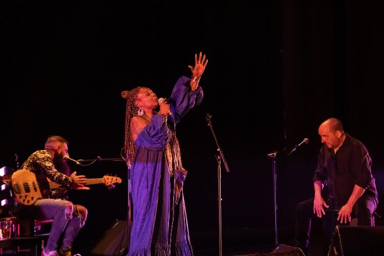Flamenco universal